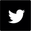 The Twitter icon.